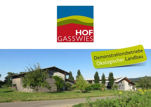 gasswies_news