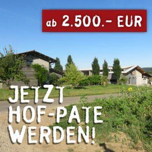hof-pate