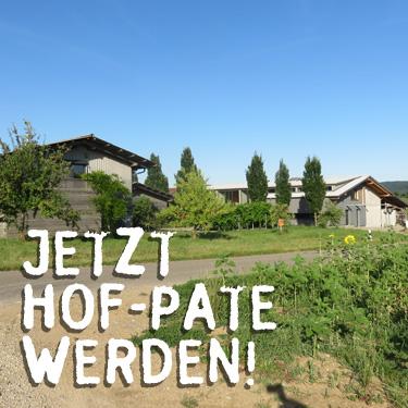 hofpate1